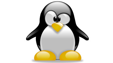 Linux+ | LPIC-1 Training